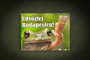 Üdvözlet-Budapesten,-békás---lapka-hűtőmágnes