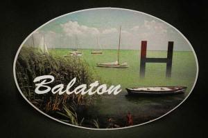 Balaton,-nádas---autós-matrica--