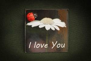 I-love-you,-katicás---lapka-hűtőmágnes